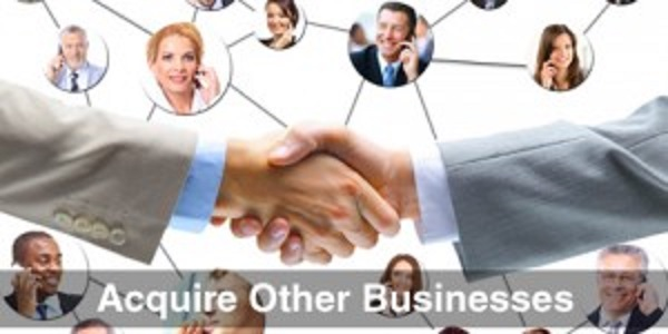 Acquire-Other-Businesses